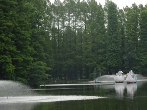 「日比野克彦とともに別所沼公園を巡るツアー&写生大会」*満員御礼につき申込み〆切ました*